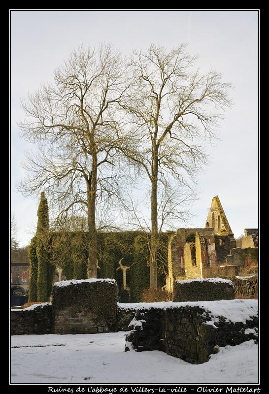 Abbaye de Villers-la-ville