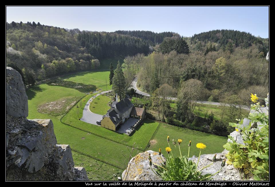 Montaigle: vue sur la vallée de la Molignée
