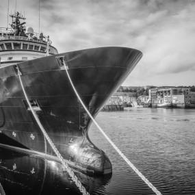 Brest : l'Abeille Bourbon