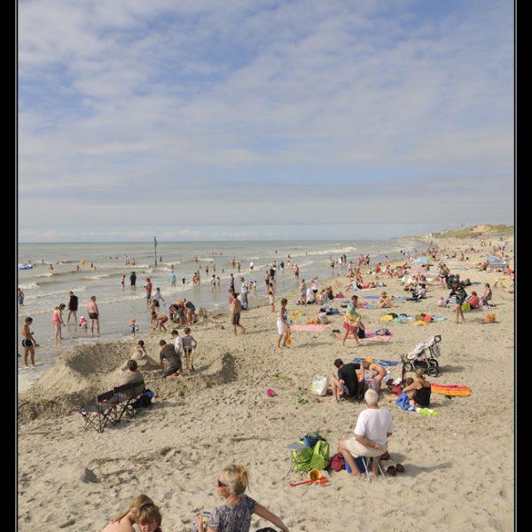 Quend-Plage-Les Pins : plage